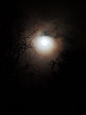 Serious bright moon https://t.co/11ASxS2YN7